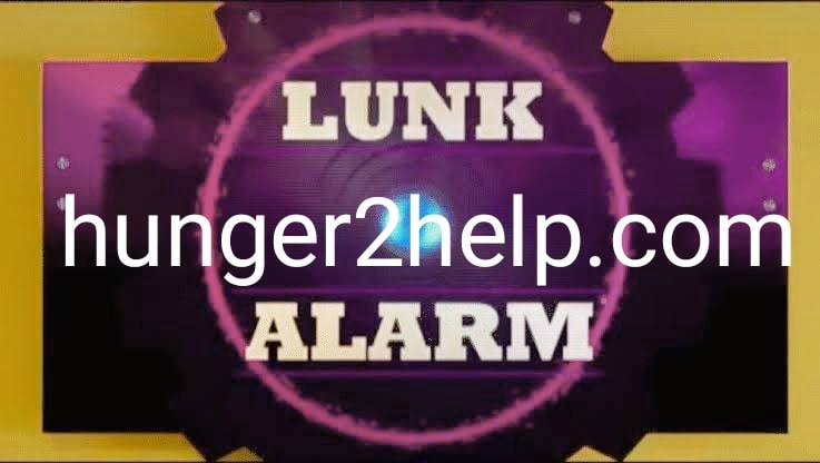 WHAT IS LUNK ALARM?